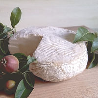 Website_Products-Brie_20200128.jpg