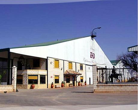 los molinos de don quijote, molinos, cervantes, campo de criptana, la mancha