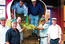 wine harvest, wine growers, wine makers, picking grapes, family business