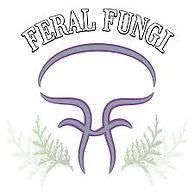 feral fungi.jpg