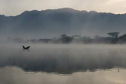 Lone Fisherman, Nyaung Shwe
