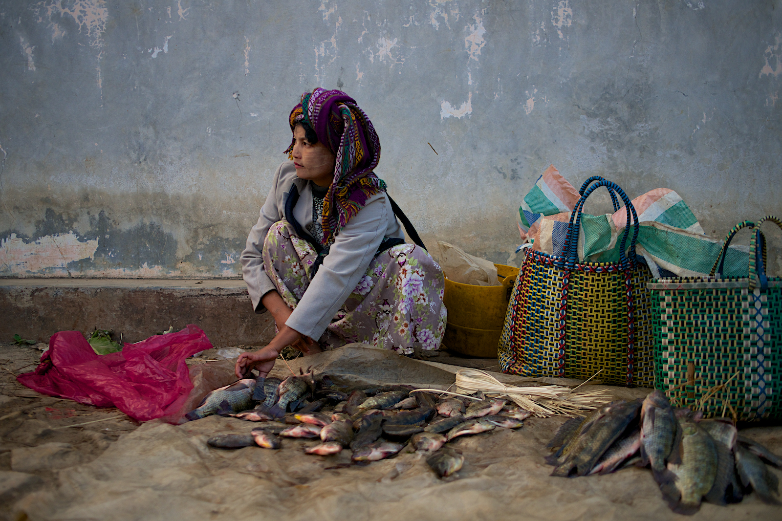 Burmese Fish Seller