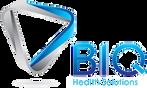 BIQ Solutions Logo (NOBK).png