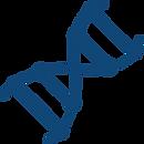 DNA2.png