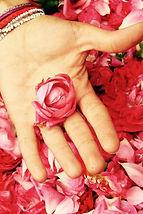 Rose de montagne - Breil sur Roya