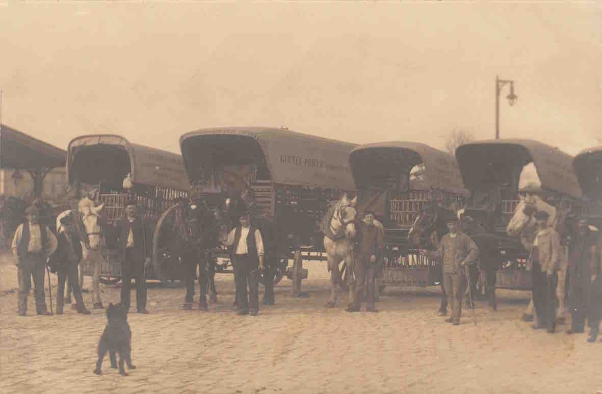GUENET-PRIEUR 1905
