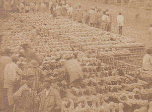 1865 MARCHE AUX MOUTONS.jpeg