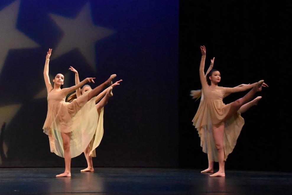DHS Benefit Dance Concert-22