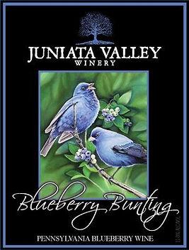 Blueberry Bunting.jpg