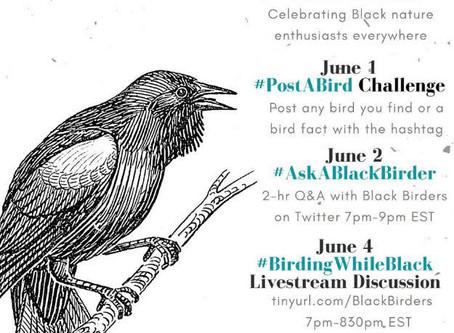 Black Birders Week by Audubon Society