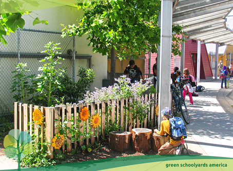 Green Schoolyards America Proposal for Parks post-COVID