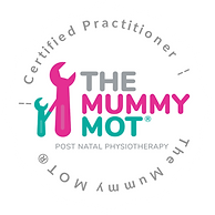 MOT certified logo.png