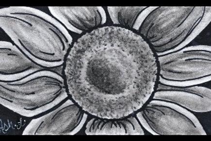 Ash's Sunflower Study #2