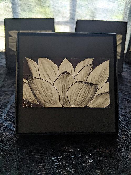 Ash's Lotus Study #1