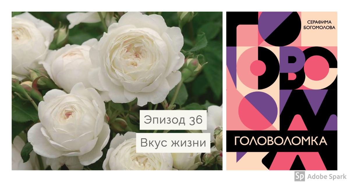 Golovolomka - episode 36