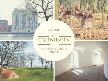 מדריך למטייל בקופנהגן- אתרים, אוכל, מלונות וטיפים לטיול בבירת העיצוב של סקנדינביה