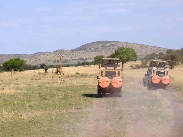 Tanzania, safafri trip