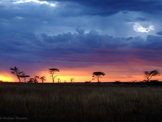 Sunset, Tanzania