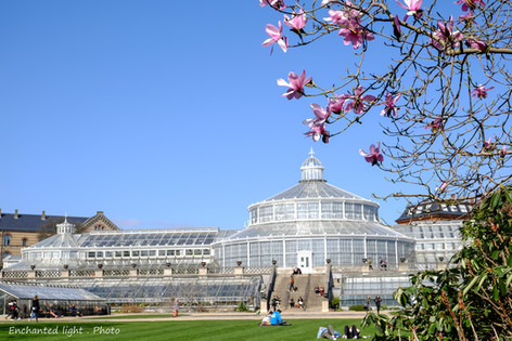 Botanic gardens Copenhagen