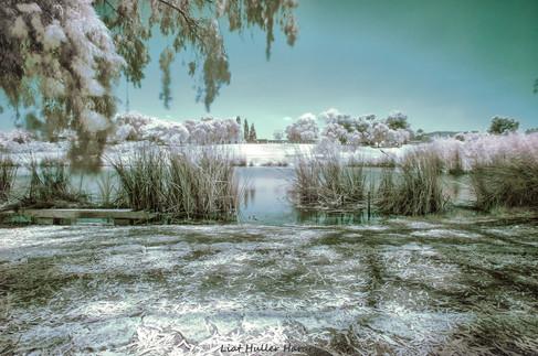 the frosen lake