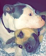 Zuko and Nala.jpg