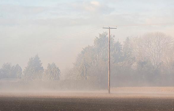 Telegraph Pole in Fog