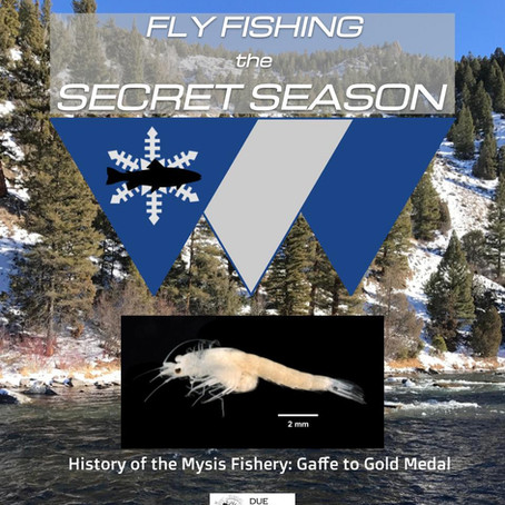 History of the Mysis Fishery: Gaffe to Gold Medal