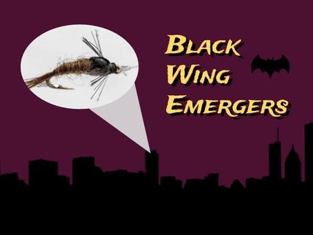 Black-wing Emergers