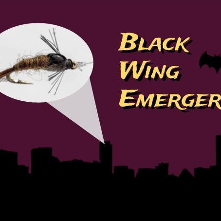 Black-wing Emergers