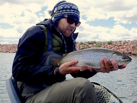 10 Essential Tips for Beginner Stillwater Anglers