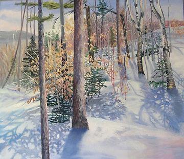 Snow Shadows.jpg