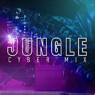 Jungle_cybermix_cover.jpg