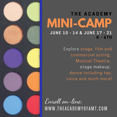 academy of acting and musical theatre mini-camp summer camp theatre camp