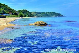キャプチャ折居海岸apc.JPG