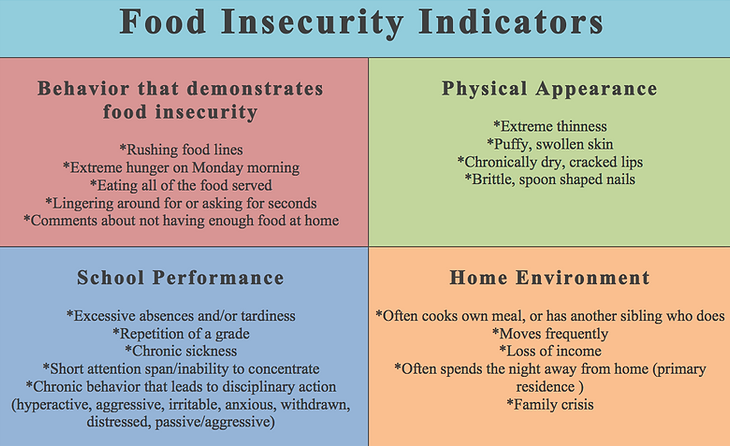 Food Insecurity Indicators