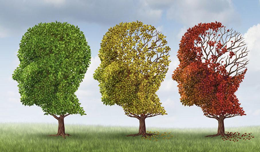 Dementia trees