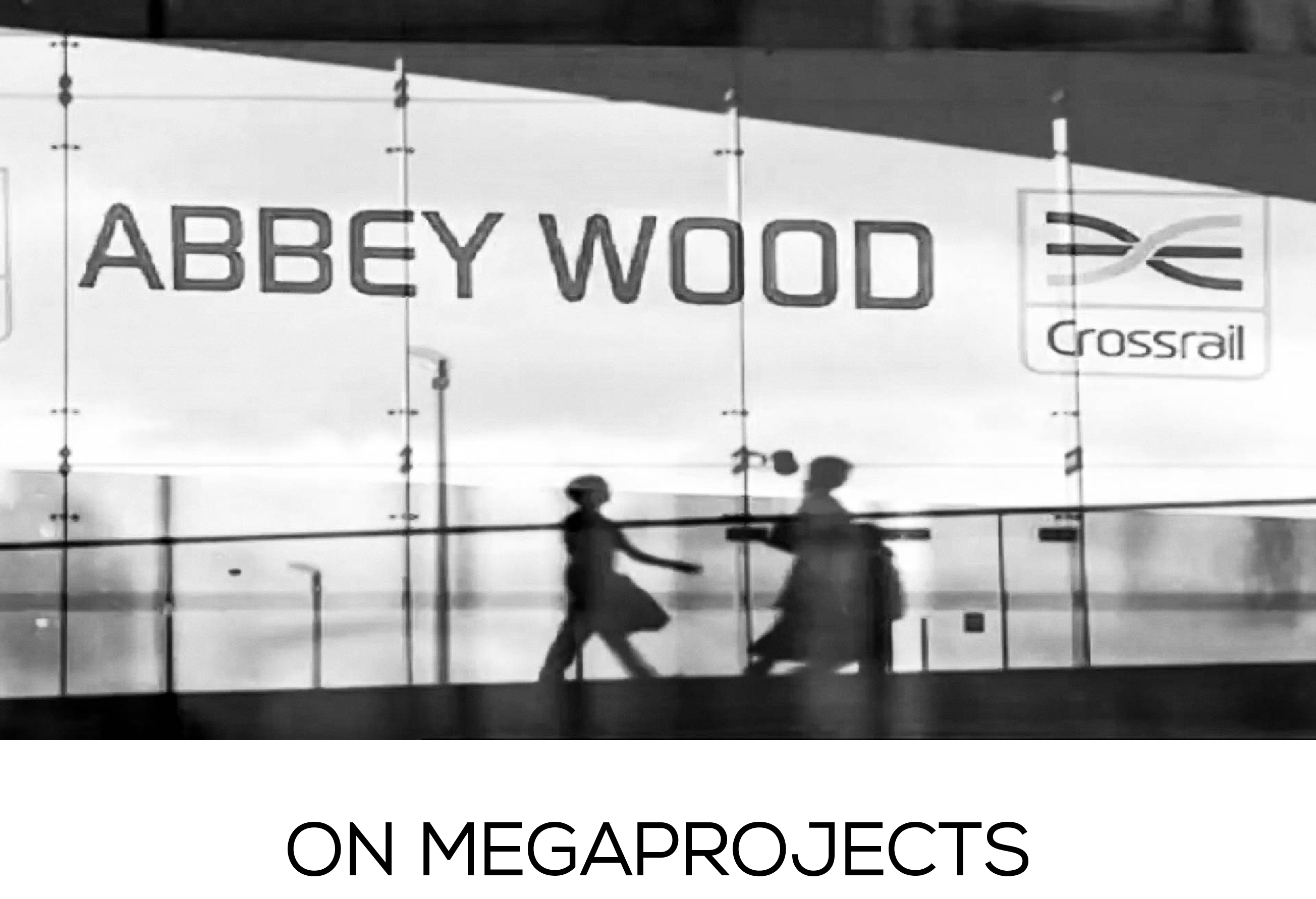 On Megaprojects