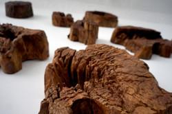 Aged log teak wood