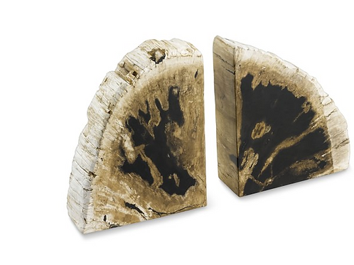 A Set of Petrified Wood Book End