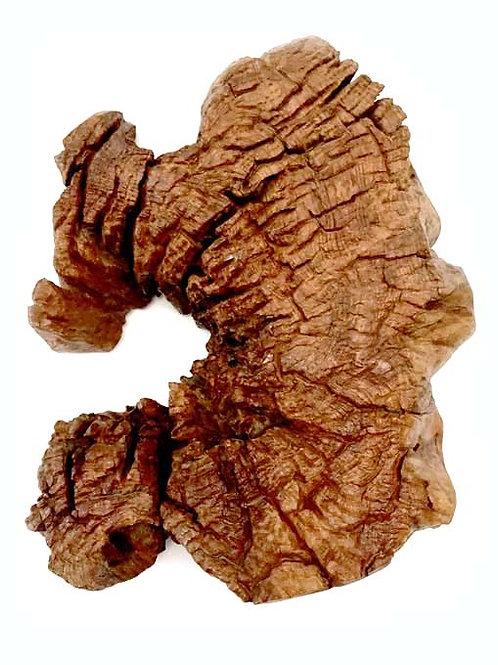 Age log wood sculpture - Medium