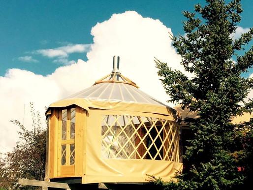 The Greenhouse Yurt