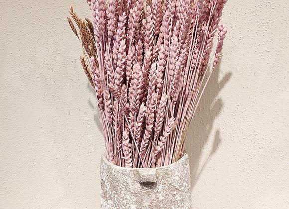 Getreide rosa