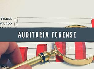 Auditoría forense.jpg