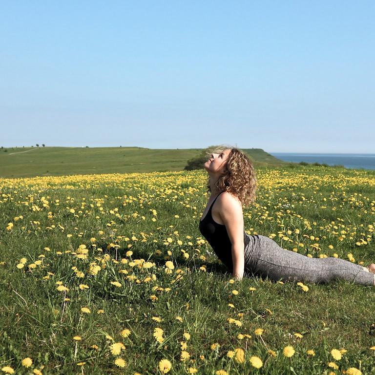 Yoga & Meditation | På Jord & Bord, Örnahusen (Fortsätter i Juni!)