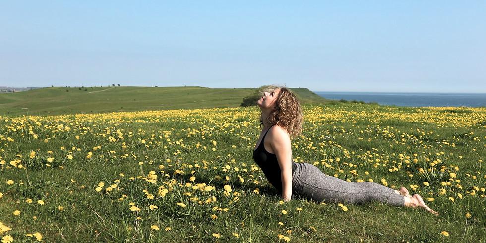Yoga & Meditation | På Jord & Bord, Örnahusen