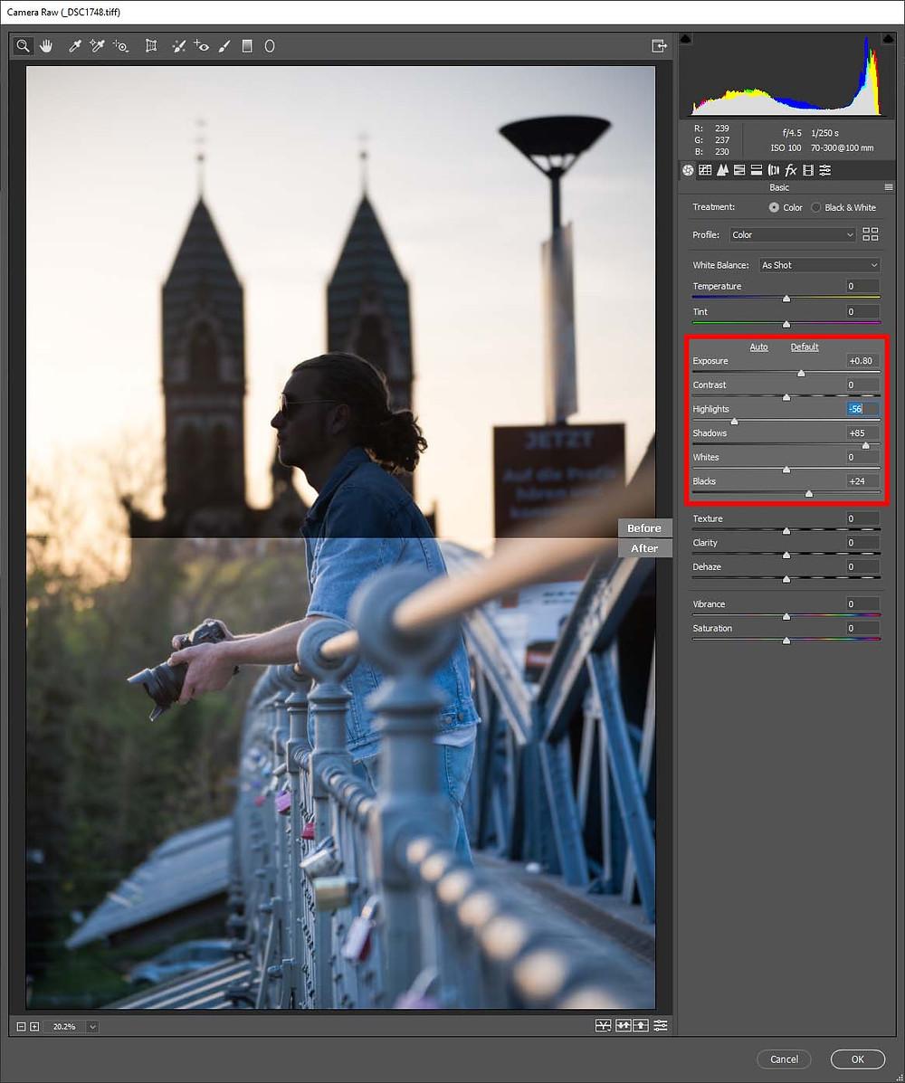 Camera Raw Filter LUT NDC