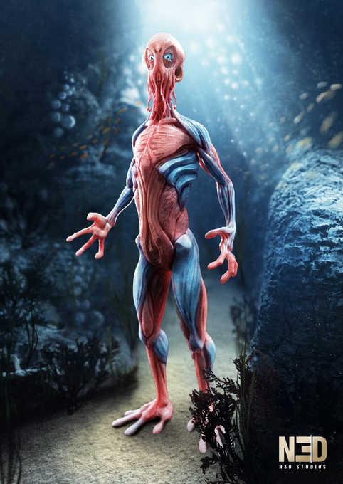 N3D-Studios_FullCreature_CoraCoralwalker_CreatureDesign_2.jpg