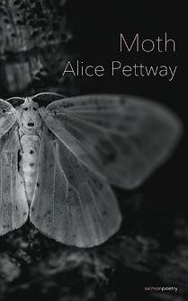 Moth - Alice Pettway_edited.jpg