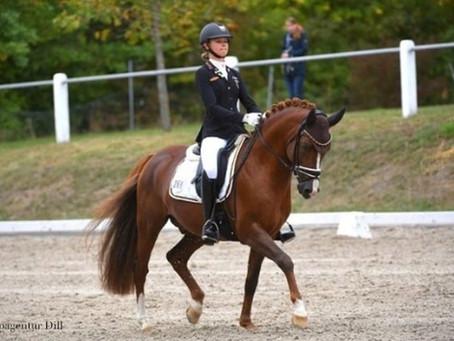 Süddeutsche Ponymeisterschaften 2020