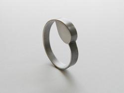 ring 2008